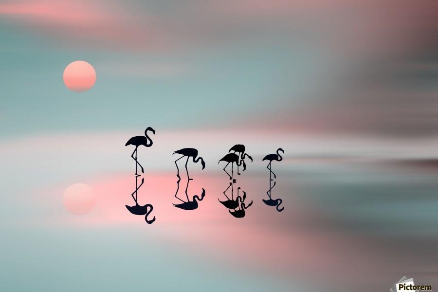 Family flamingos  Print