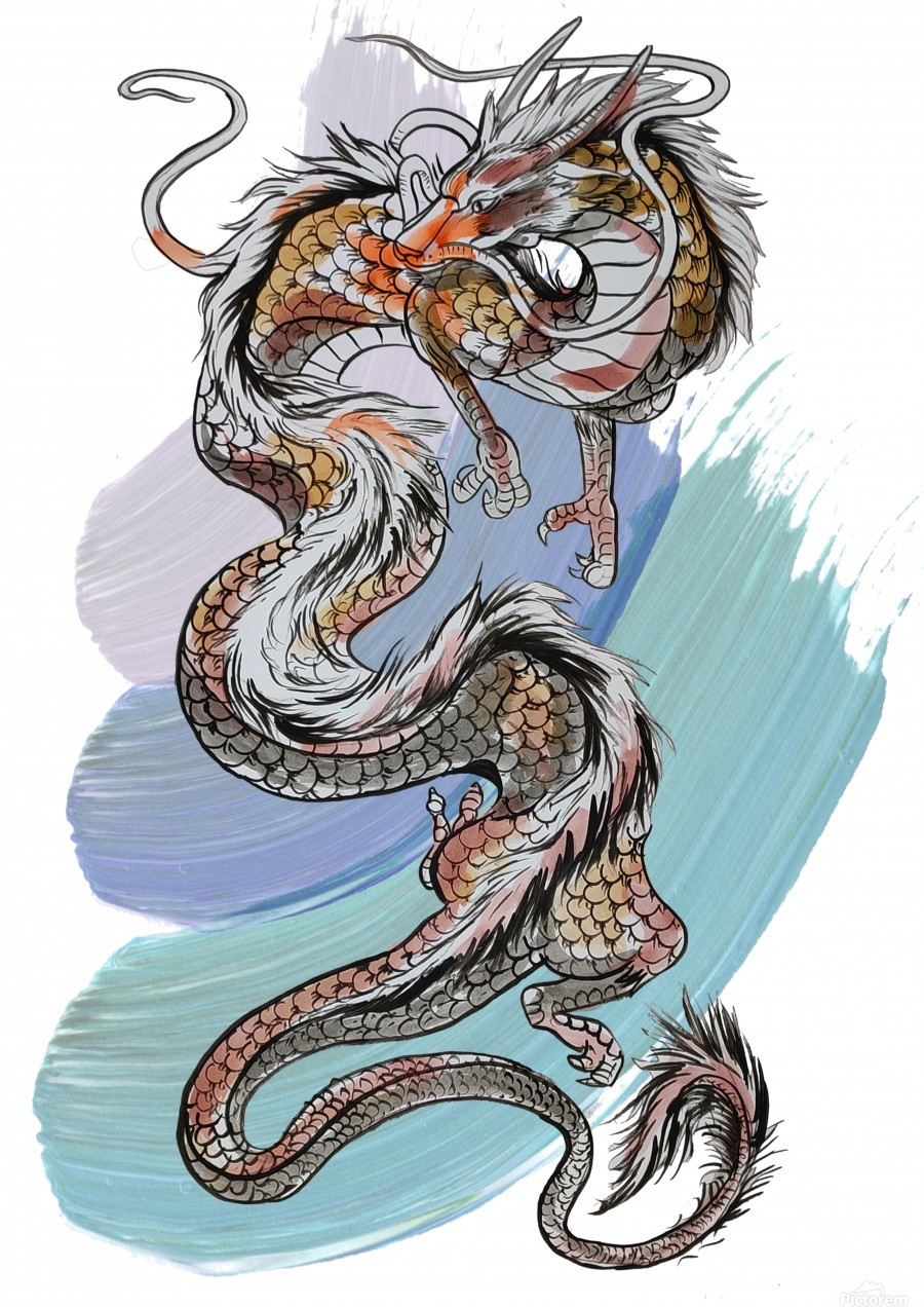 Chinese Dragon Sketch Asp Arts Canvas