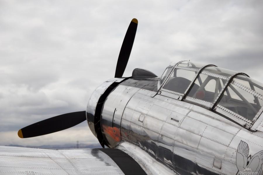 P-53 Nose  Print