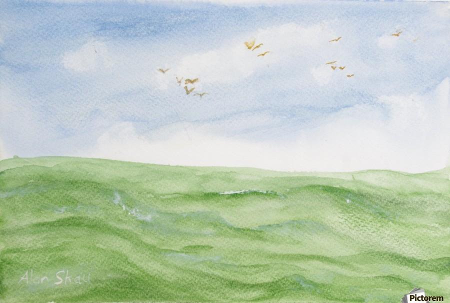 Birds over the ocean.  Print