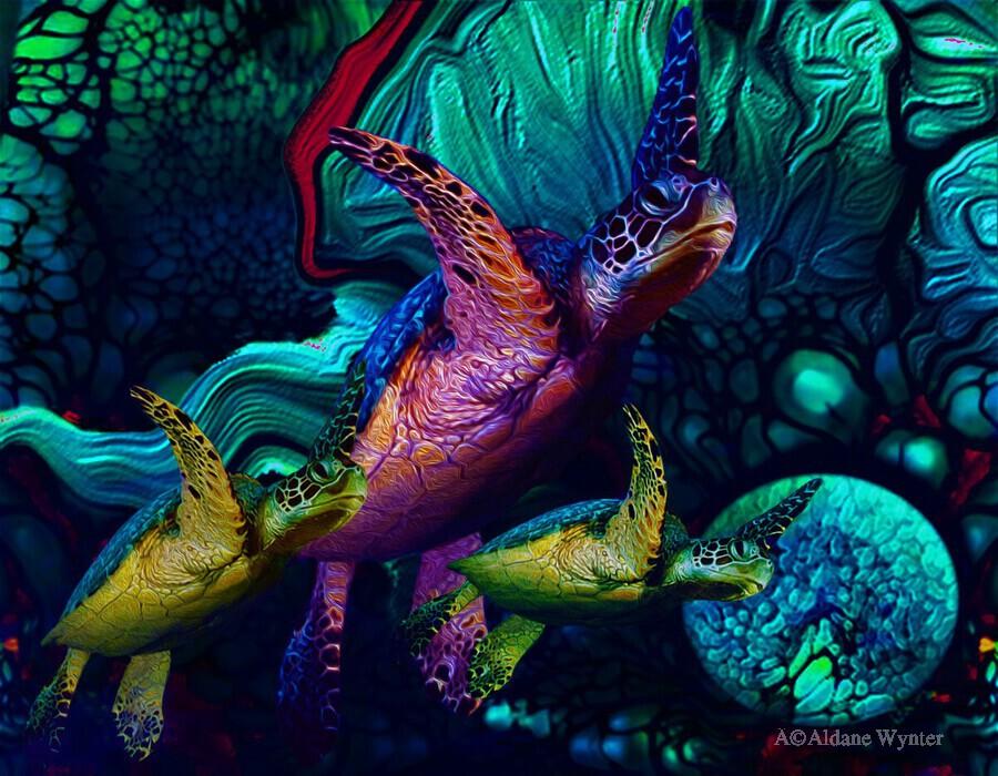 Turtles en Saison 5  Print