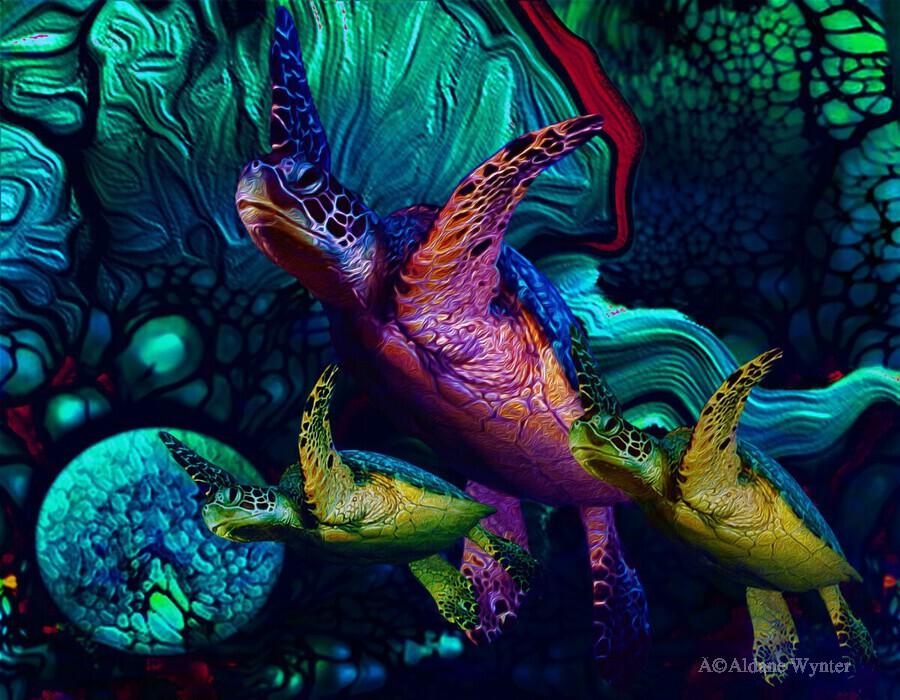 Turtles en Saison 6  Print