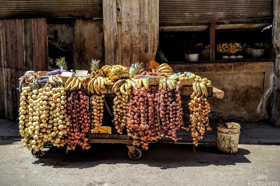 Fruits  Print
