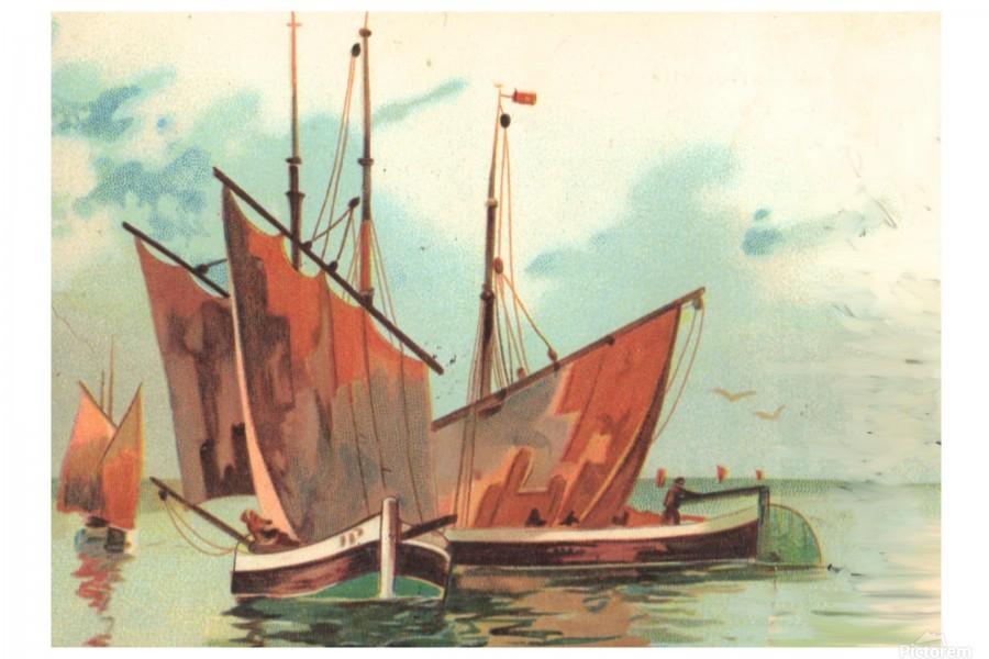 Greeting card Sailing boats  Print