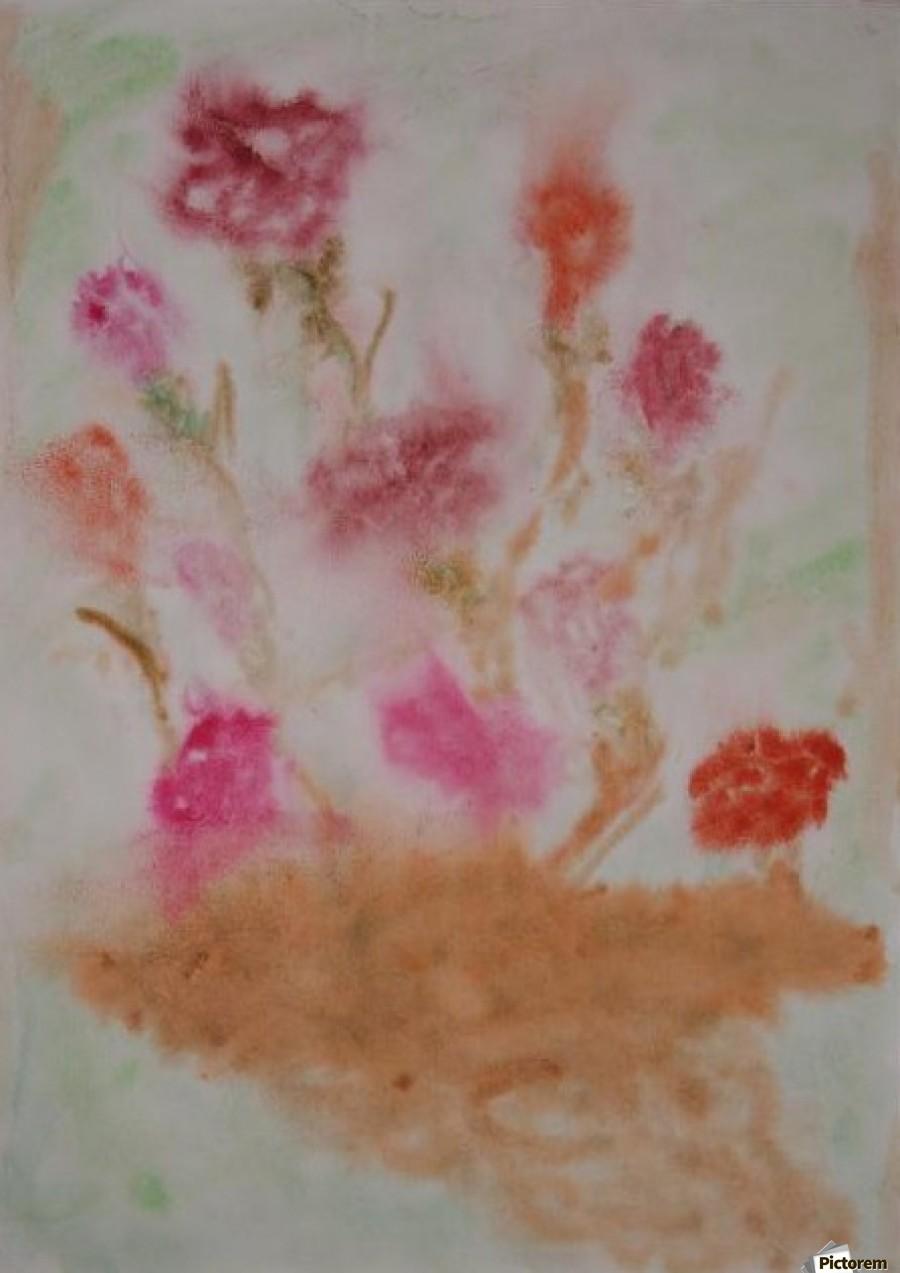 Carnations  Print