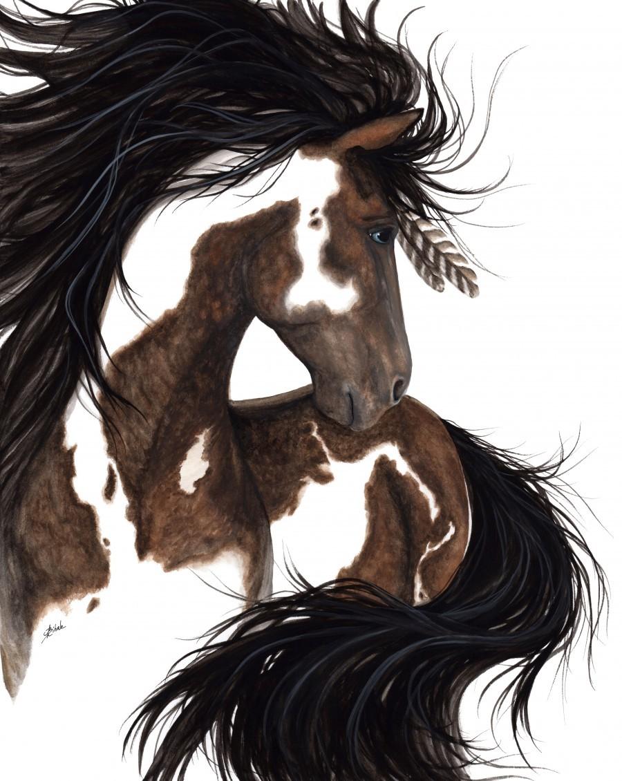 Pinto Horse  Print