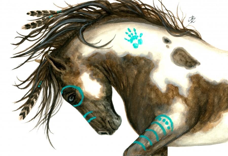 Pinto Horse Turquoise   Print