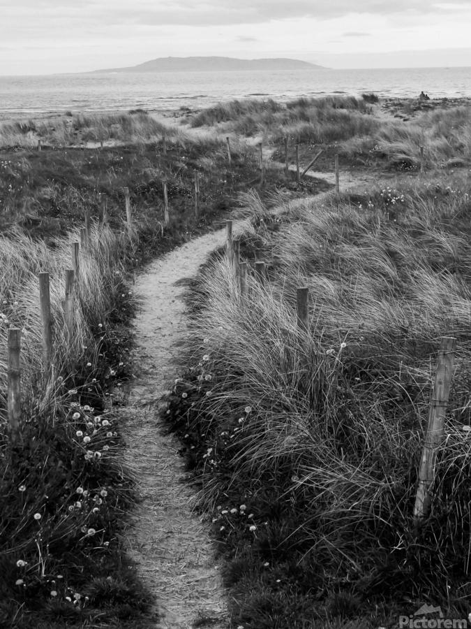 Path to the Sea  Print