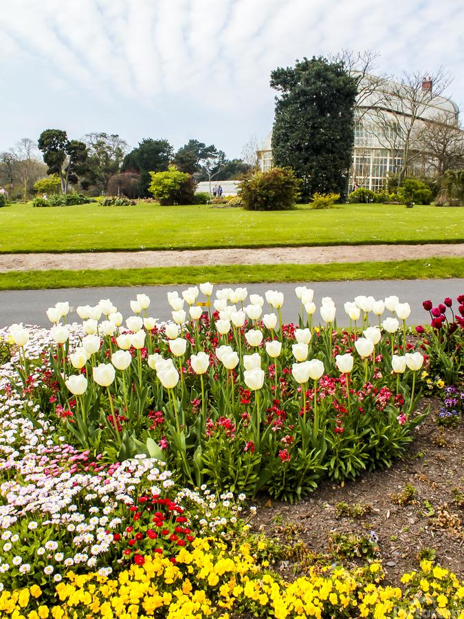 Botanic Garden II  Print