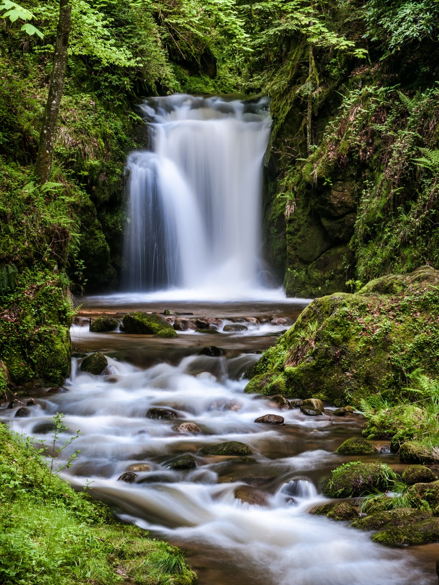 Watefall in the Black Forest in Germany  Print