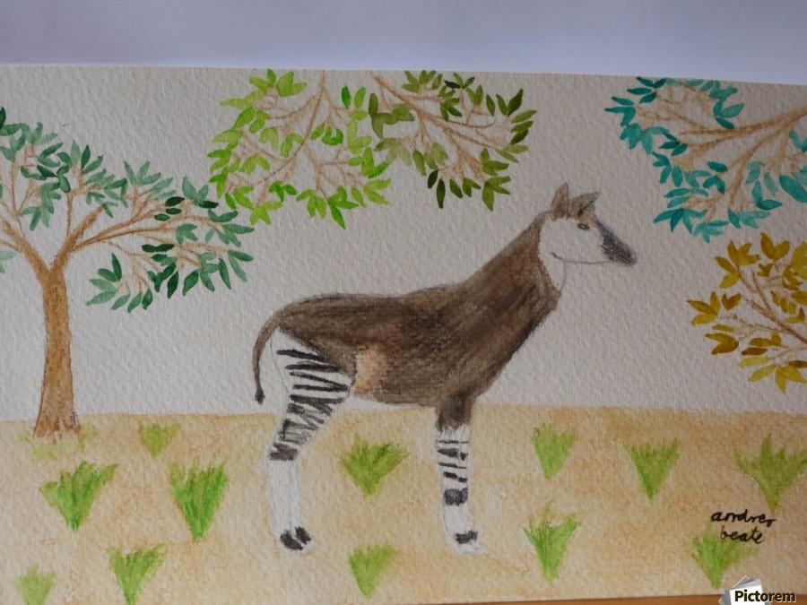 Okapi  Print