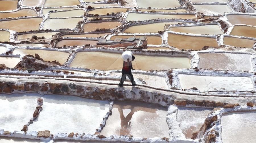 A Day at the Salt Mine  Print