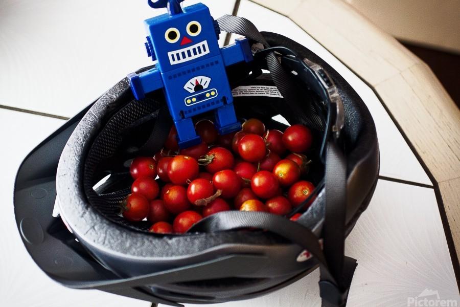 Robot Bike Helmet Tomatoes  Print