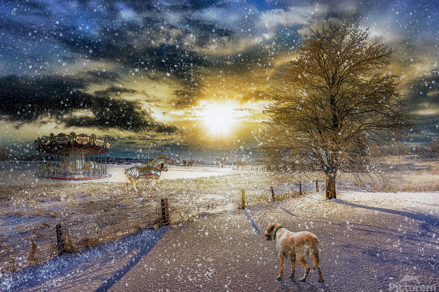 A Magical Winter Night  Print