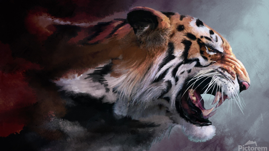 Lunging Tiger  Print