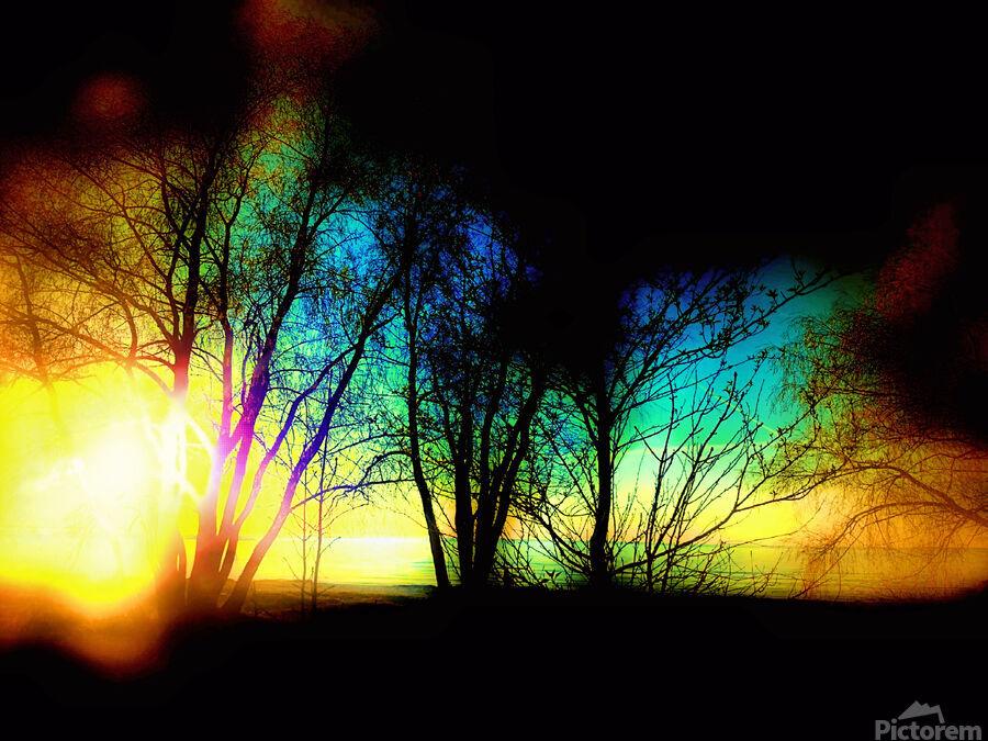 Evening tree  Print