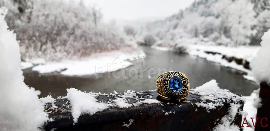 One for the Ring-- Winter  Print