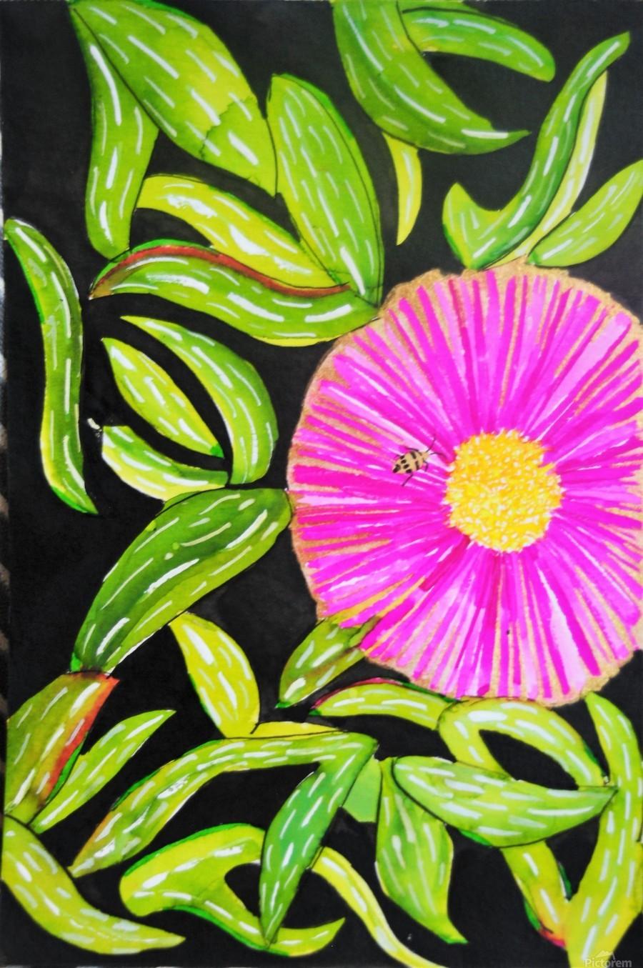 Coastal Flower  Print