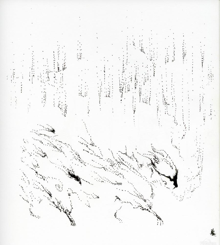 Northern  Print