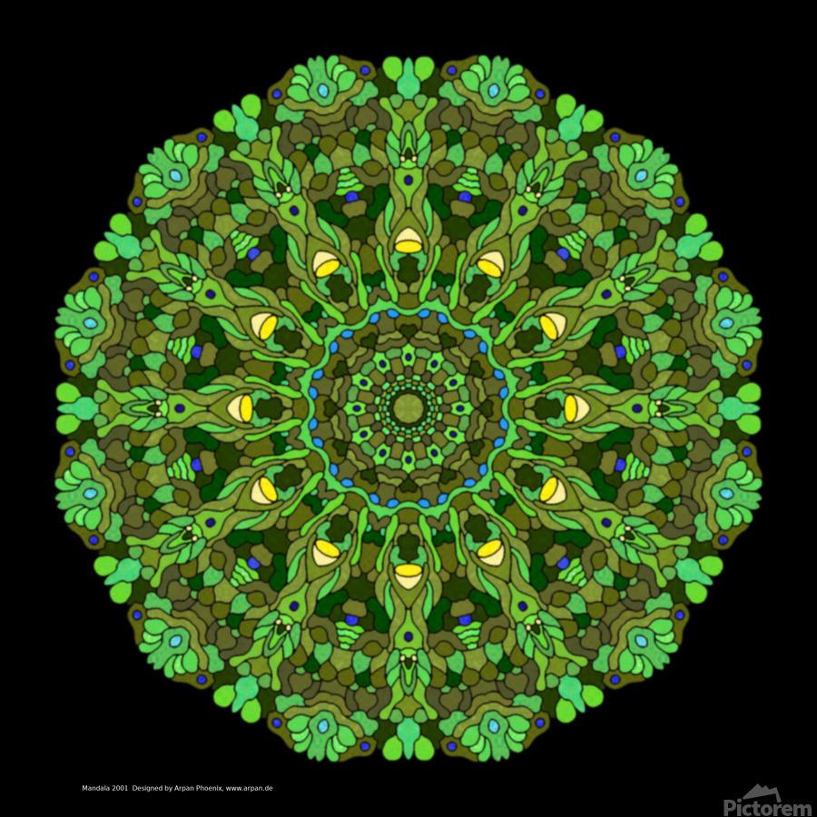 Mandala 2001  Print