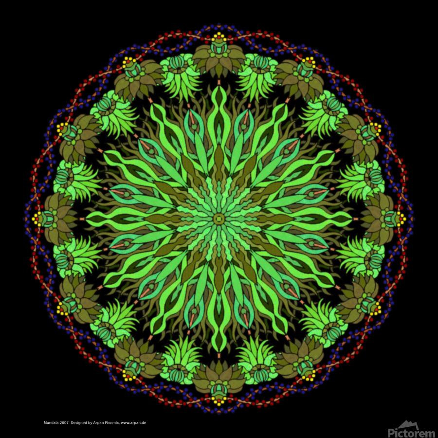 Mandala 2007  Print