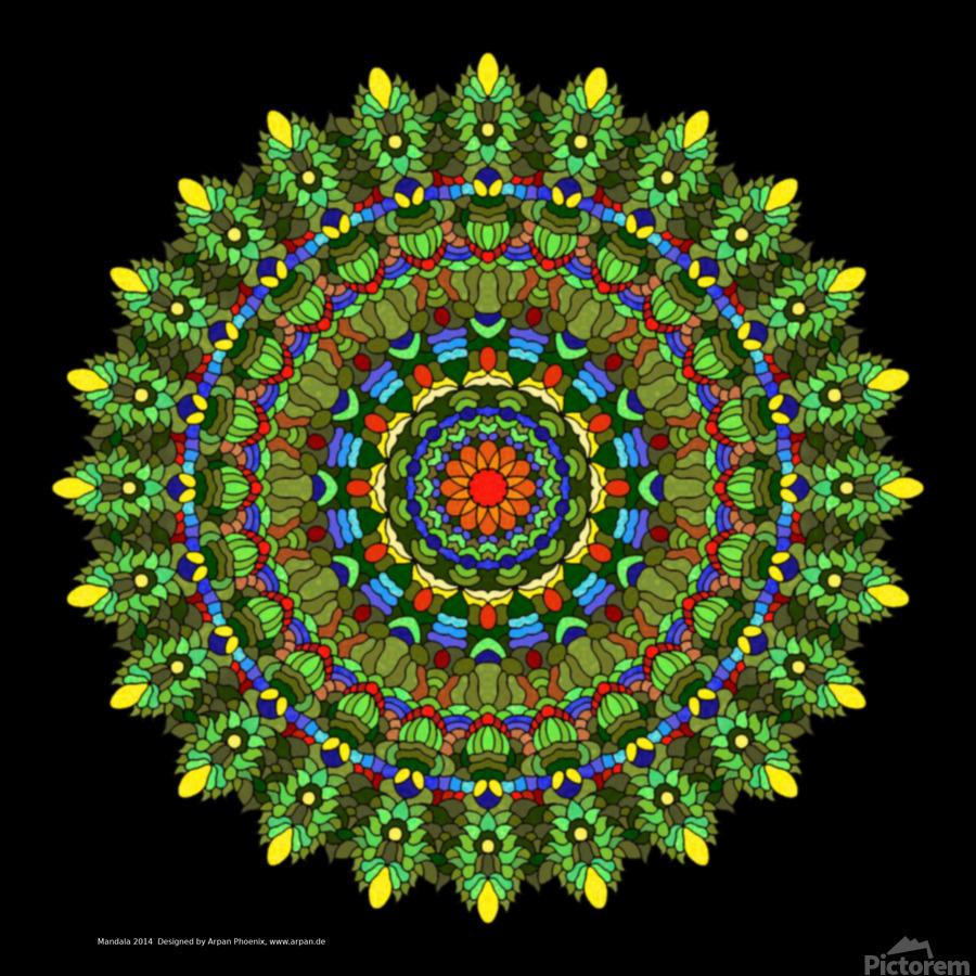 Mandala 2014  Print