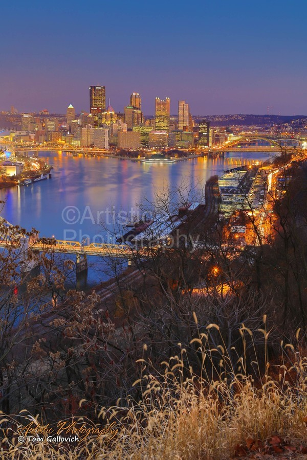 Light Up Night - AP 3190  Print