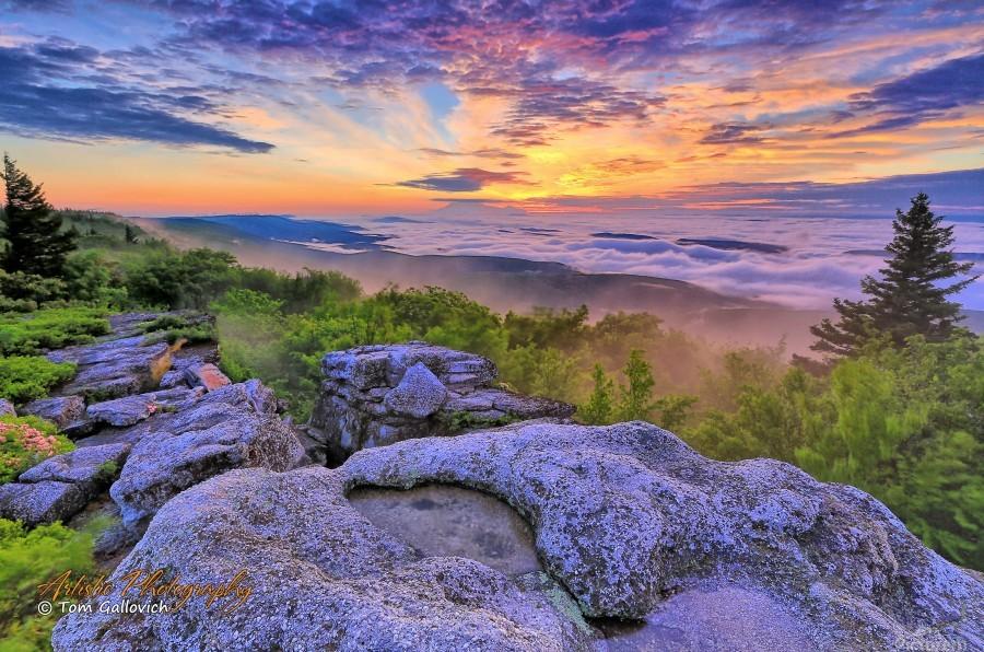 Sunrise - AP 3790  Print