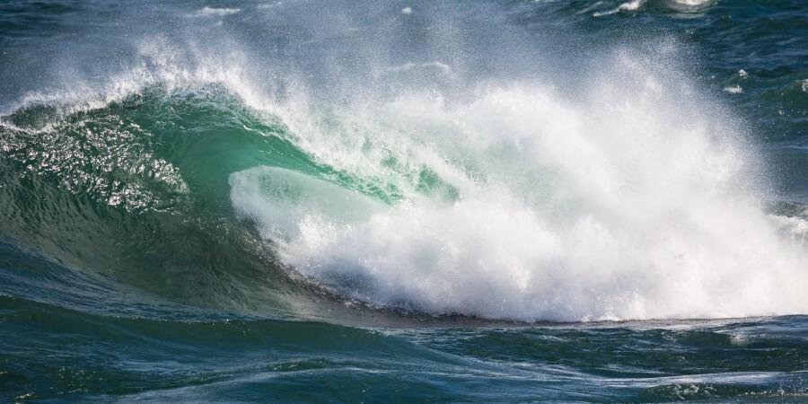 Wave Curl ap 2668  Print