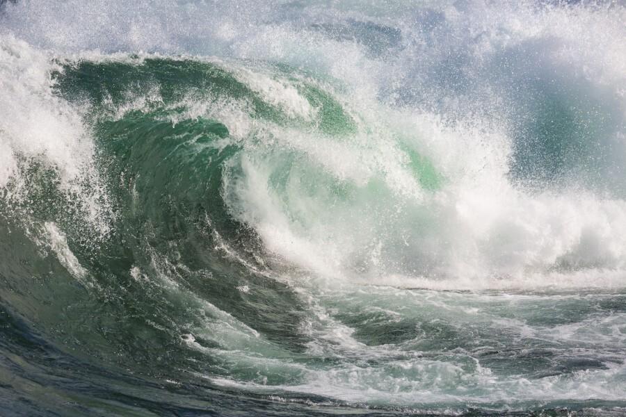 Wave Curl ap 2672  Print