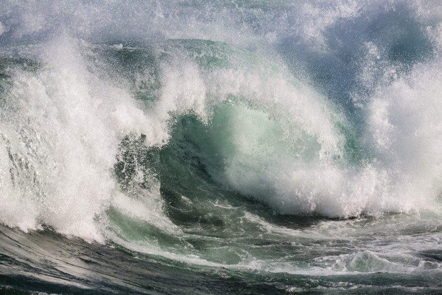 Wave Curl ap 2674  Print