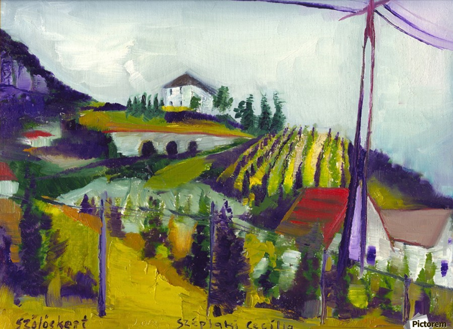 Vineyards on foothill  Print