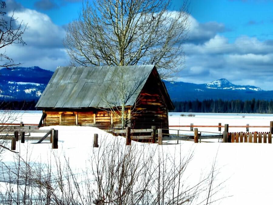 Winter Homestead   Print