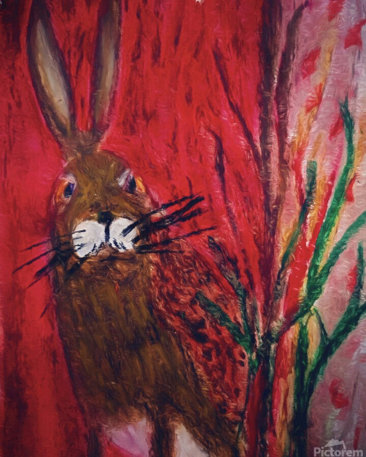 Red Rabbit  Print