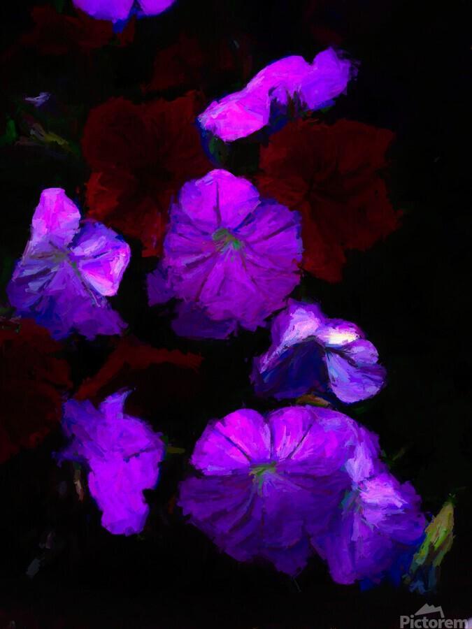 Evening Flowers  Print
