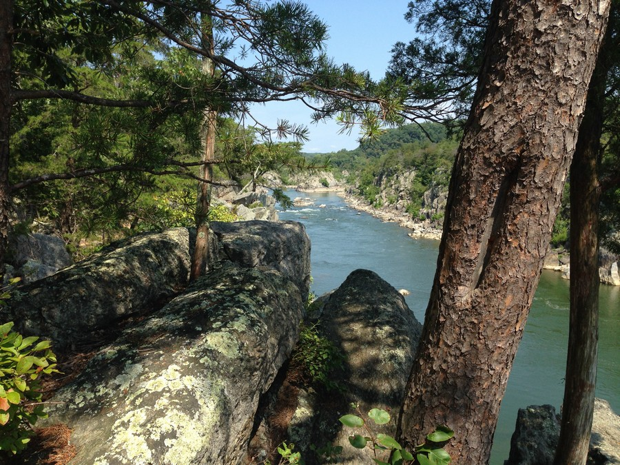 View of the Potomac at Great Falls  Print