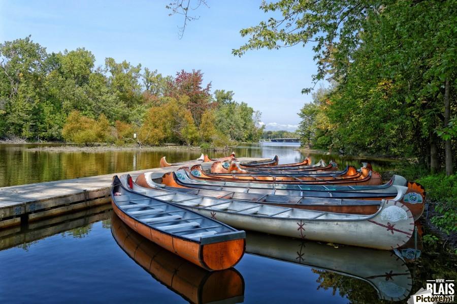 Canoes  Print