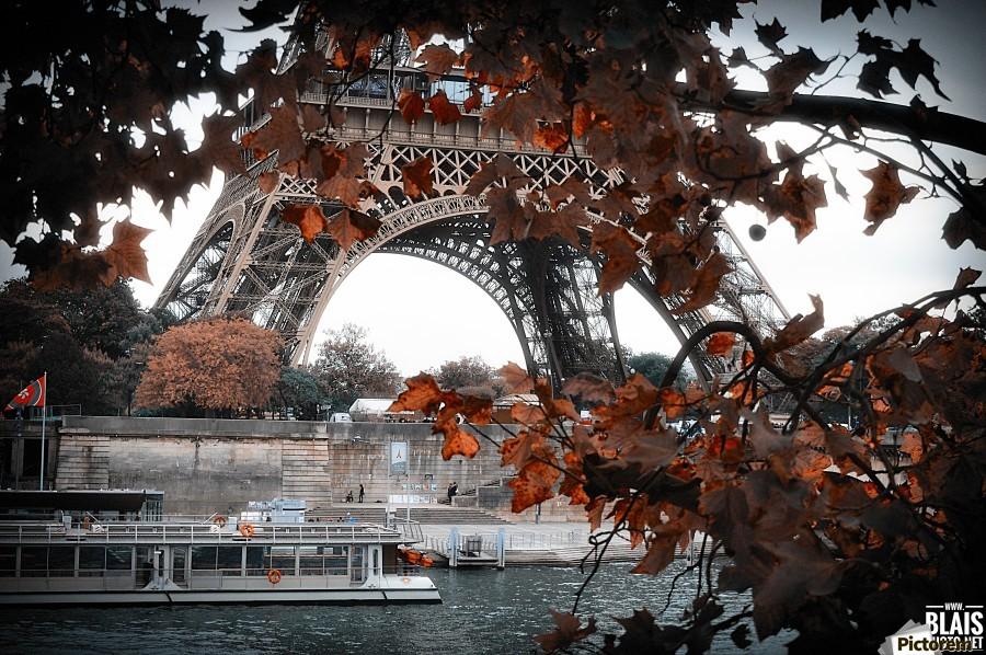 Autumn in Paris  Print