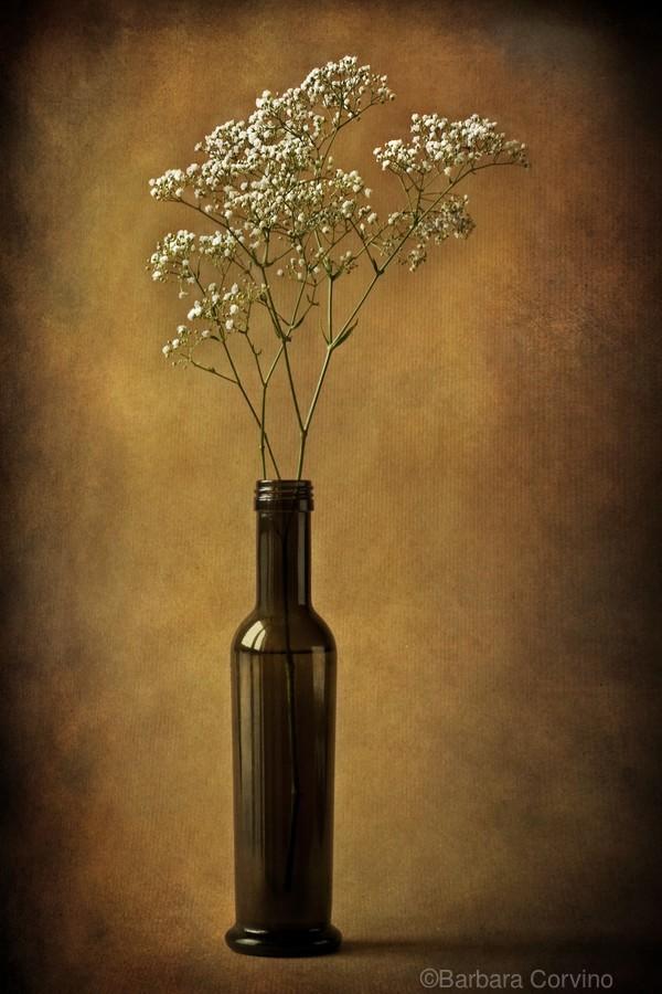 The olive oil bottle  Print
