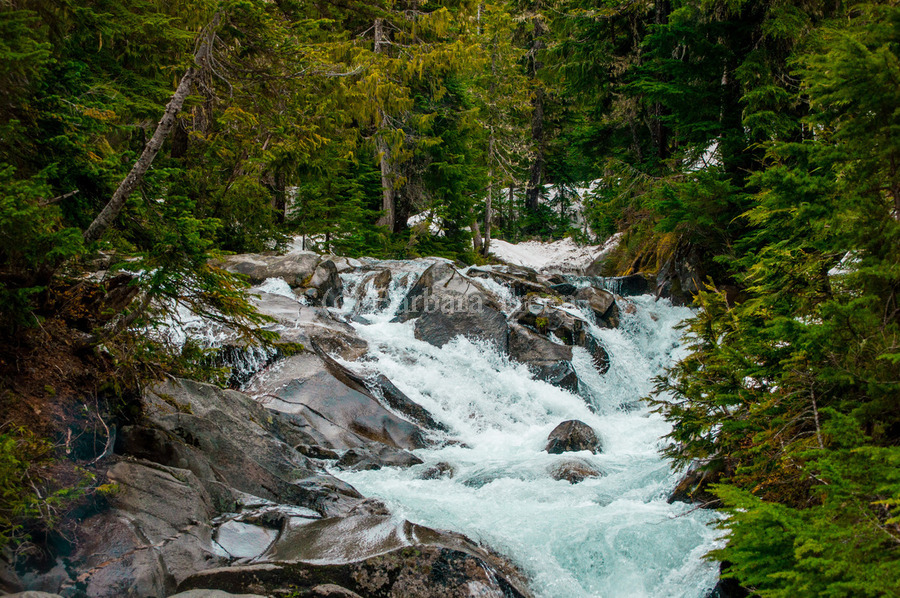 Wild Water in the Mountains  Print