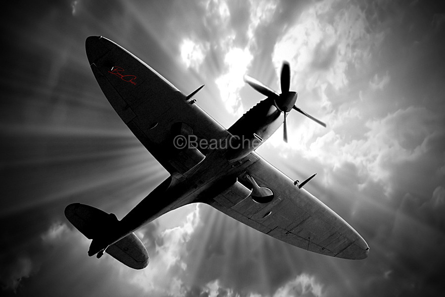 Spitfire Angel Limited Edition 50 Prints only  Print