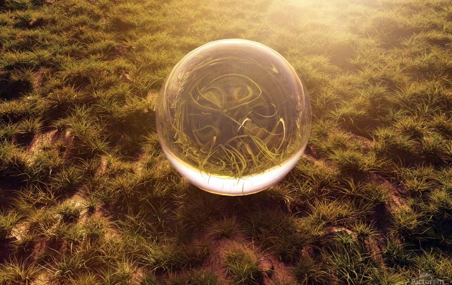 crystal ball on green grass in the morning sunshine light  Print