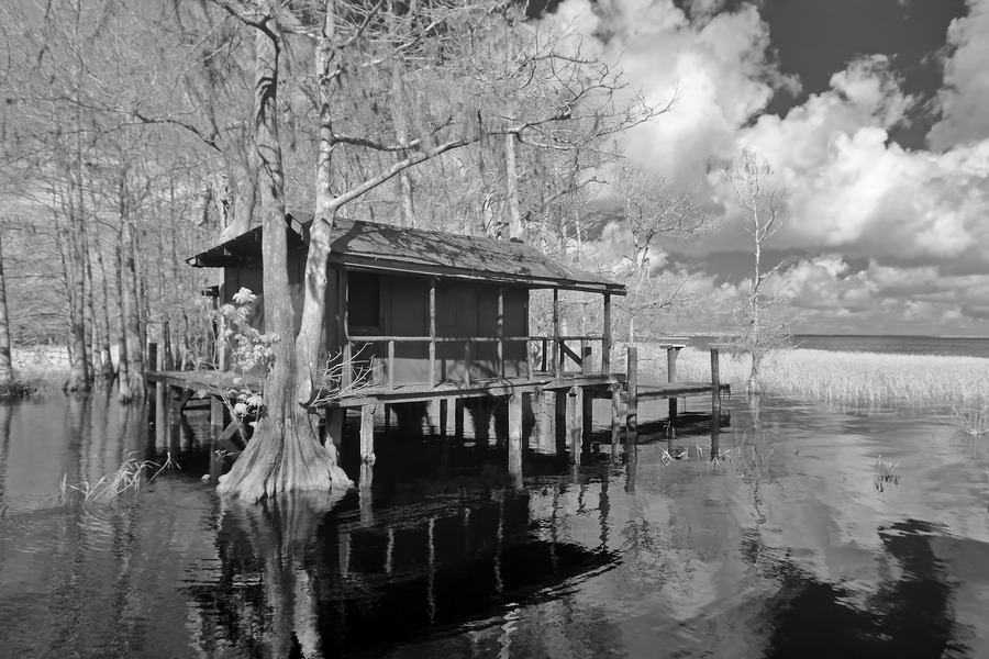 Fish Camp at Blue Cypress Lake Florida  Print