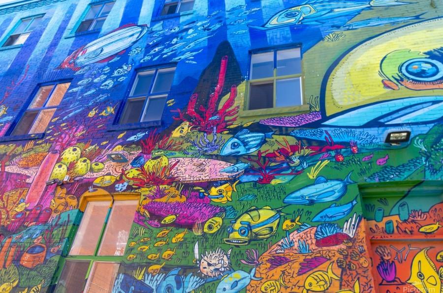 Torontos Graffiti Alley  16  Print