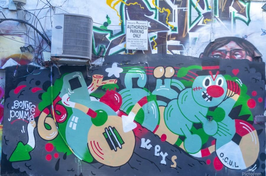 Torontos Graffiti Alley 32  Print