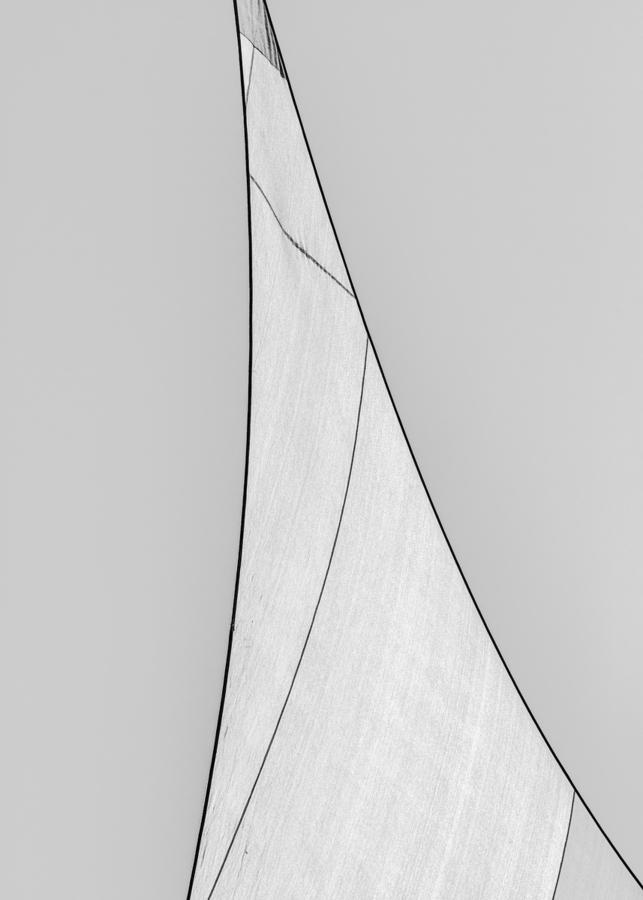 Abstract Sailcloth 18  Print