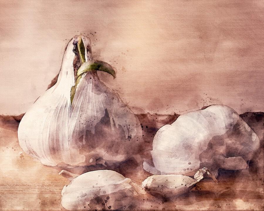Garlic In The Kitchen  Print
