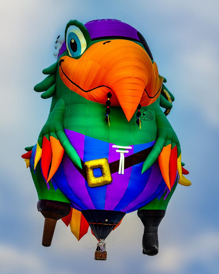 Pirate Parrot Adventures  Print