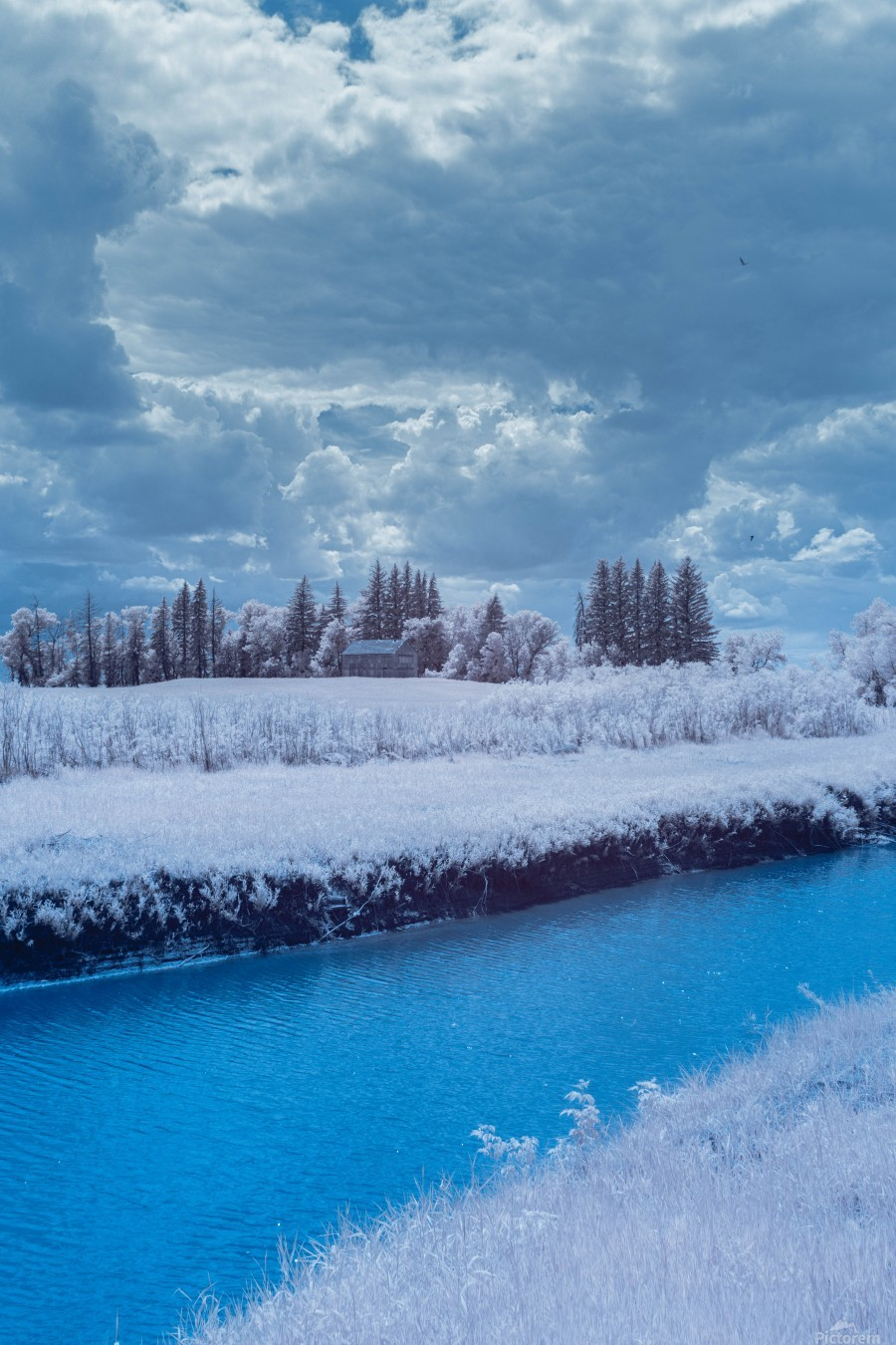 Infrared River  Print
