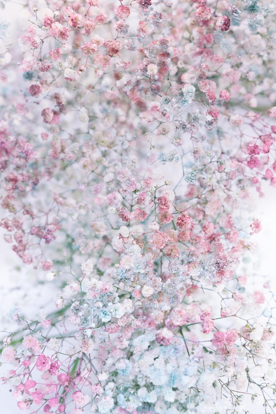 Daltana Pastel Floral Dianola  Print